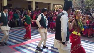 Download darchula multipal campus ( sumitra kunwar) Video