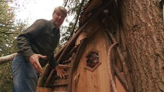 Download Take a Tour of a Beehive Inspired Treehouse | Treehouse Masters Video