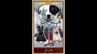 Download November 30, 2019 - Tarot Card of the Day Video