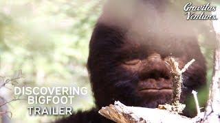 Download Discovering Bigfoot Trailer Video