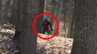 Download 4 Terrifying BIGFOOT Encounters Caught on Camera Video