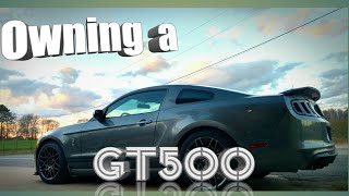 Download What its like to own a Shelby GT500. Video