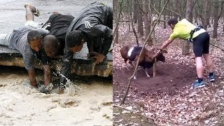 Download TOP Animal Rescues, Emotional/Inspiring/Funny Will Melt Your Heart Compilation. REAL LIFE HEROES Video