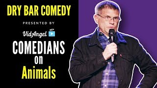 Download ″Talking Animals″ (HUGE COMPILATION) - Dry Bar Comedy Video