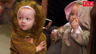 Download The Quints' Safari-Themed Halloween Costumes | OutDaughtered Video