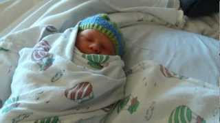 Download Adorable Big Sister meets Baby Brother for the first time Video