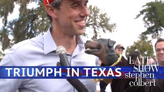 Download Triumph The Insult Comic Dog Meets Beto And Cruz Video