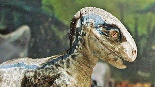 Download Jurassic World 2: Fallen Kingdom - Meet Blue | official trailer teaser #6 (2018) Video