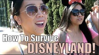 Download How to Survive in Disneyland! - July 26, 2015 - ItsJudysLife Vlogs Video