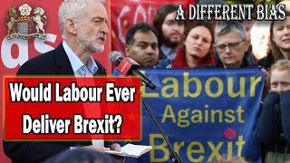Download Could a Labour Government Ever Deliver Brexit? Video