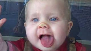 Download Hilarious Baby Licking Window Video