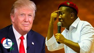 Download Julius Malema No Nonsense Response to Trump's Twitter Threats Video