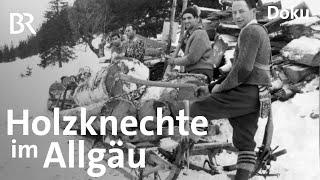 Download Holzknechte im Allgäu: Lebensgefährliche Arbeit | Zwischen Spessart und Karwendel | Doku | BR Video