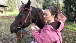 Download April dude ranch application Video