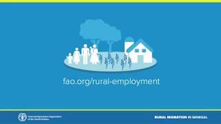 Download Rural migration in Senegal Video