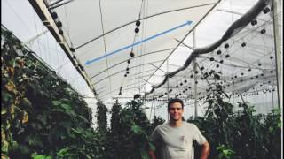 Download Tropical and Hot Climate Greenhouse Design: Natural Ventilation Augmented Cooling NVAC Greenhouse Video