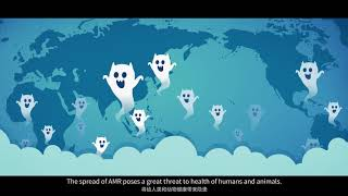 Download For better animal health, use antimicrobials responsibly Video