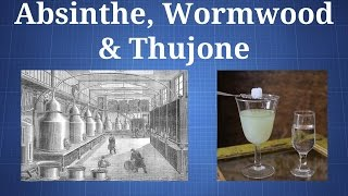 Download Absinthe, Thujone, & Artemisia absinthium: What You Need To Know Video