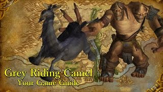 Download 6.2.0 Reins of The Grey Riding Camel Technique Guide WoW Video