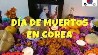Download DIA DE MUERTOS EN COREA | Double Trouble en Corea 334 ♥ #DTEC Video