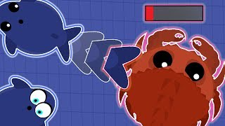Download MOPE.IO NEW UPDATE! LEGENDARY BLUE WHALE TROLLING THE NEW KING CRAB! (Mope.io New Christmas Update) Video