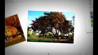Download Green Office Program at American River College Video