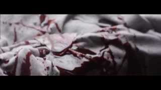 Download Twisted Insane - Floor Boards (feat. Kamikazi) OFFICIAL VIDEO Video