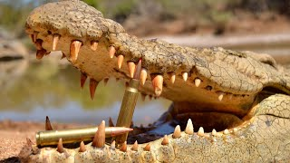 Download Crocodile Hunting with RW Safaris and African Sun Productions Video