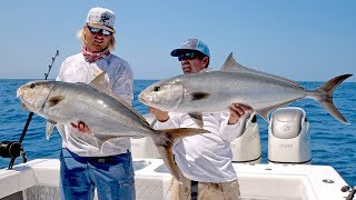 Download Absolutely INSANE Topwater Amberjack Fishing Action Video