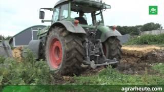 Download Hofreport: Mobilställe für Freilandschweine Video