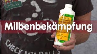 Download Reptil TV - Technik - Milbenbekämpfung ohne Dichlorvos Video