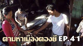 Download ตามหาเมืองตองยี EP.41 ปลาท่องโก๋จิ้มชาร้อนแบบดั้งเดิมในตลาดริมทางหนองบอนอร่อยถูกใจมาก Video