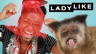 Download We Let A Monkey Style Us • Ladylike Video