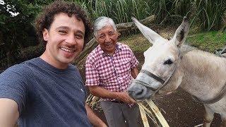 Download Este hombre se hizo millonario trabajando con su burro | Galápagos 🏝 Video