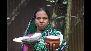Download Village Food   Doi hilsa recipe   Grandmother recipes-115 Video