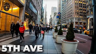 Download ⁴ᴷ⁶⁰ Walking Fifth Avenue, NYC during the Holidays 2018 from 42nd Street to Central Park Video
