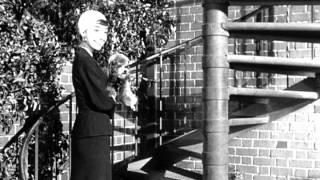 Download Sabrina (1954) - Trailer Video
