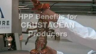 Download Avure Technologies Seafood High Pressure Processing (HPP) 2009 Video