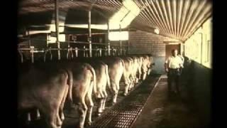 Download Landwirtschaft einst und heute (1970) Video