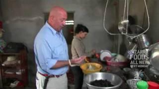 Download Eating Tarantulas in Cambodia Video