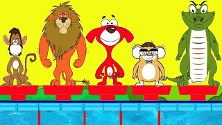 Download Rat-A-Tat |'Funny Animals Swimming Race + More Videos for Kids'| Chotoonz Kids Funny Cartoon Videos Video
