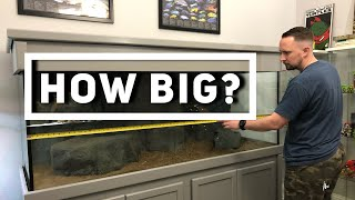 Download How to set up an AFRICAN CICHLID tank | Choosing the right size tank! | Jay Wilson Video