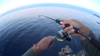 Download Grouper vs. UltraLight. 20.05.2017 Video