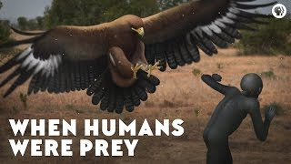 Download When Humans Were Prey Video