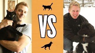 Download Cat Owner Life VS Dog Owner Life Video