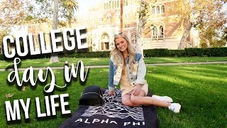 Download College Day in my Life: Classes + Packing for Spring Break! | Tasha Farsaci Video