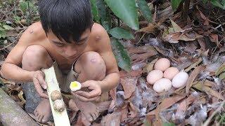 Download Primitive Life: Roasted Egg - Find Food In Wild Video