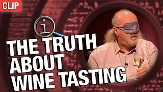 Download QI | The Truth About Wine Tasting Video