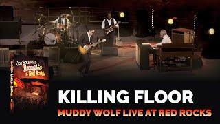 Download Joe Bonamassa - Killing Floor - Muddy Wolf at Red Rocks Video