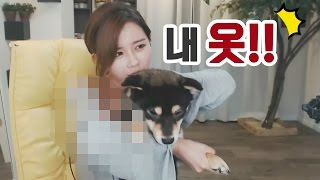 Download 김이브님♥순덕이 때문에 방송사고 날 뻔하다!? Video